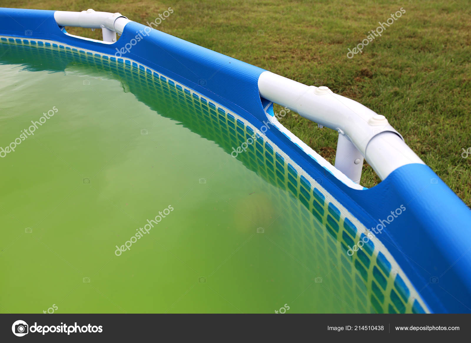 Backyard Swimming Pool Has Turned Green Algae Dirt Need ...