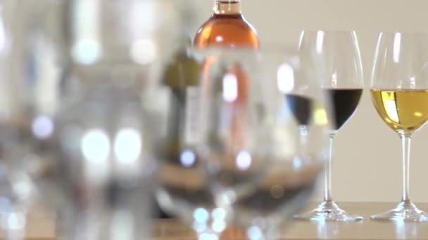Žena se drží sklenku vína, turisté jsou degustace vína koncepce