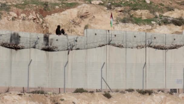 Palestinian Arab child boy waving flag on barbed wire on security wall, Jerusalem, Israel