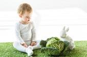 adorabile bambino seduto su erba verde vicino a verza e coniglio decorativo su bianco