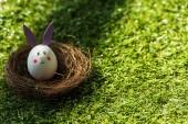 csirke tojás vicces nyuszi arcát és a papír füle a fészek zöld fű