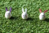 selektivní zaměření kuřecích vajec s čerpačky s králičí plochou a ušima na zelené trávě