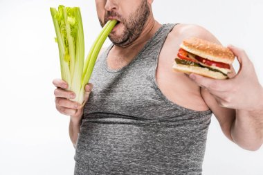 Cropped view of overweight man biting celery while holding burger isolated on white stock vector