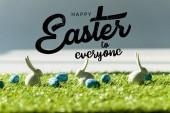 Fotografie Zierkaninchen auf grünem Gras neben blauen Wachteleiern mit frohen Ostern für alle Illustration