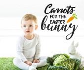 aranyos baba a kelkáposzta közelében üldögél, a dekoratív nyúl a sárgarépával a húsvéti nyuszi fehér háttéren