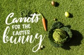 Photo top view of carrot, savoy cabbage and painted Easter eggs on green grass with  carrots for the Easter bunny lettering