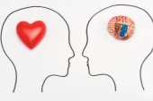 Fotografie heads with human brain and red heart isolated on white