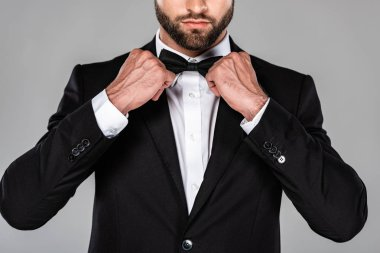 Cropped view of elegant man in black suit fixing bow tie isolated on grey stock vector