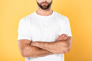 Cropped view of man in white t-shirt with crossed arms isolated on yellow stock vector