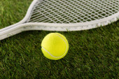 tennis racket and ball on green grass, sports betting concept