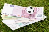 selektivní zaměření fotbalových a eurobankovek na zelenou trávu, koncept sportovního sázení