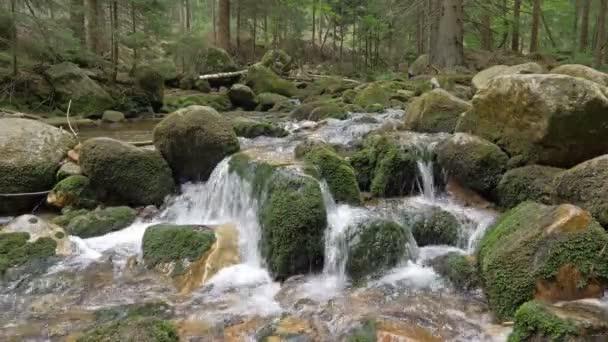 Krásná horská řeka tekoucí vodou