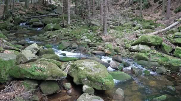 Horská řeka tekoucí vodou
