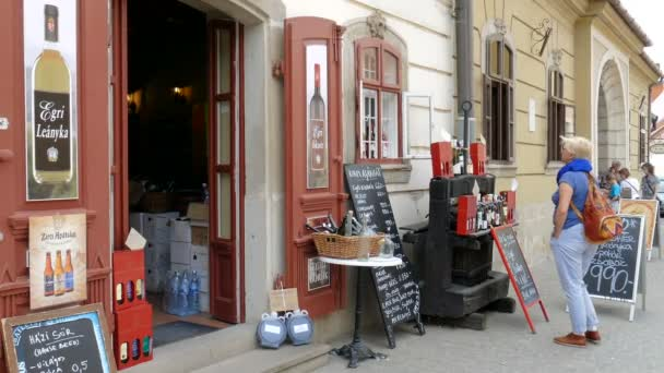 EGER, HUNGARY - APRIL 2016: Eger, Hungary. Shop with the famous wines from Eger, Egri Bikaver and Egri Leany