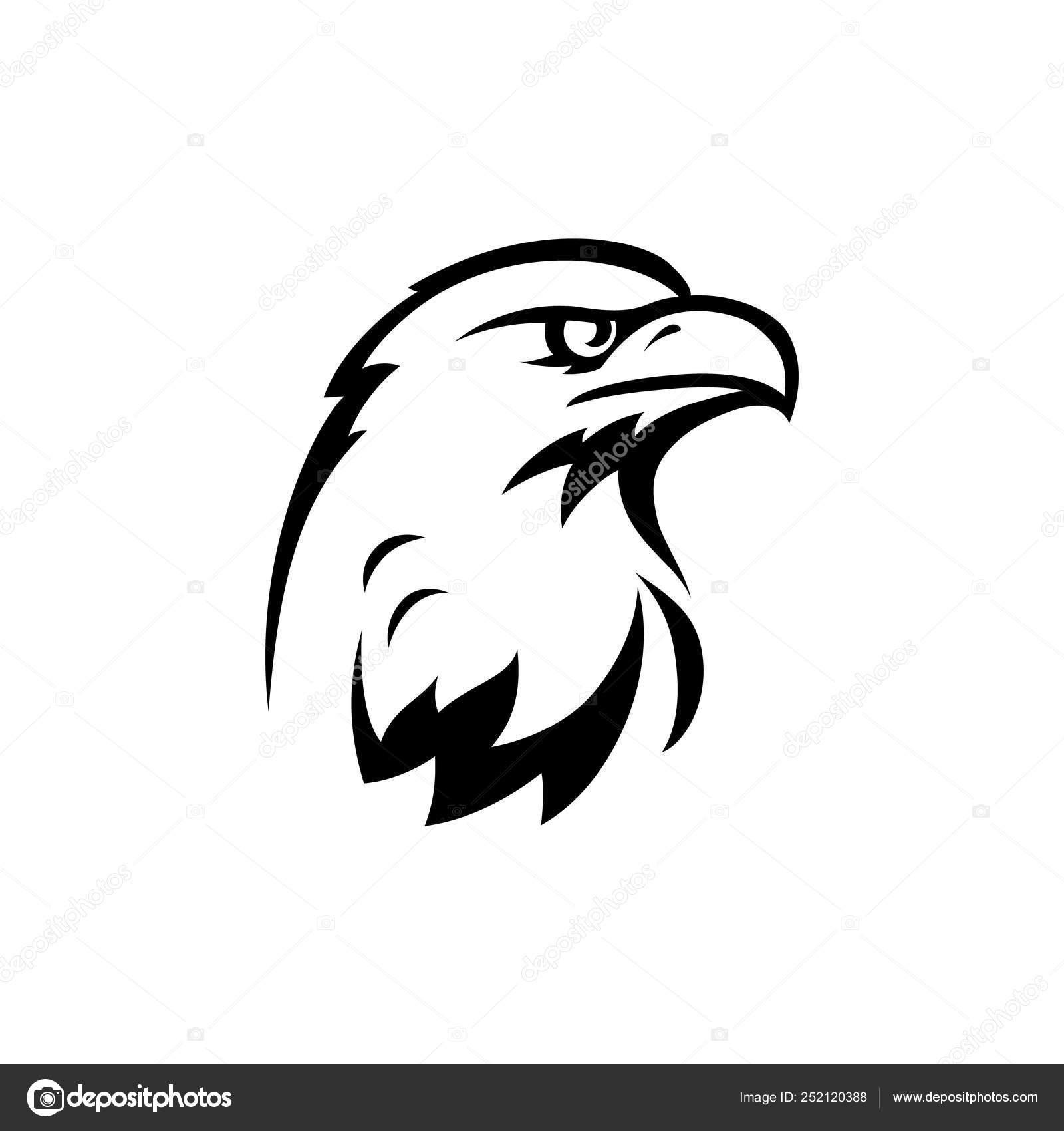 Bird Prey Hawk Stock Vector C 3608616 Gmail Com 252120388