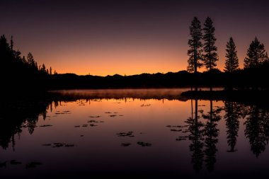 Bench Lake Sawtooths sunset with Silhouette forest reflection