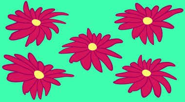 five dark pink daisies with a yellow center on a turquoise background