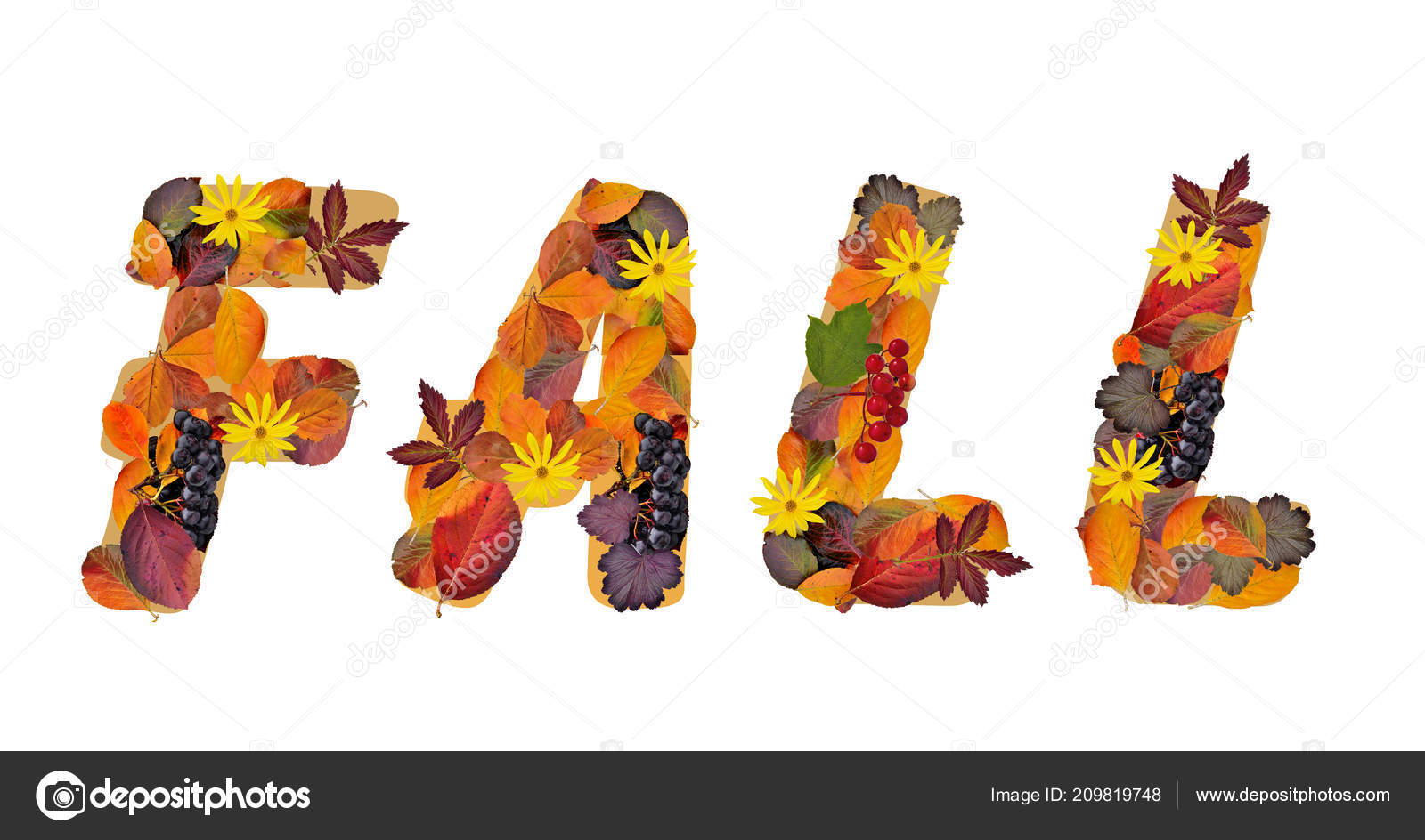 word fall composed bright colorful autumn leaves different plants
