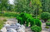 Zelené sochy velkých a dvou malých medvědů vytvořených z umělé trávy - zahradní topiář. Tvůrčí nápad pro design krajiny. Kamenná zahrada, trpasličí borovice v popředí. Krajinářský koncept