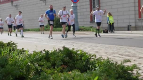 Crowd of athletes running at the marathon