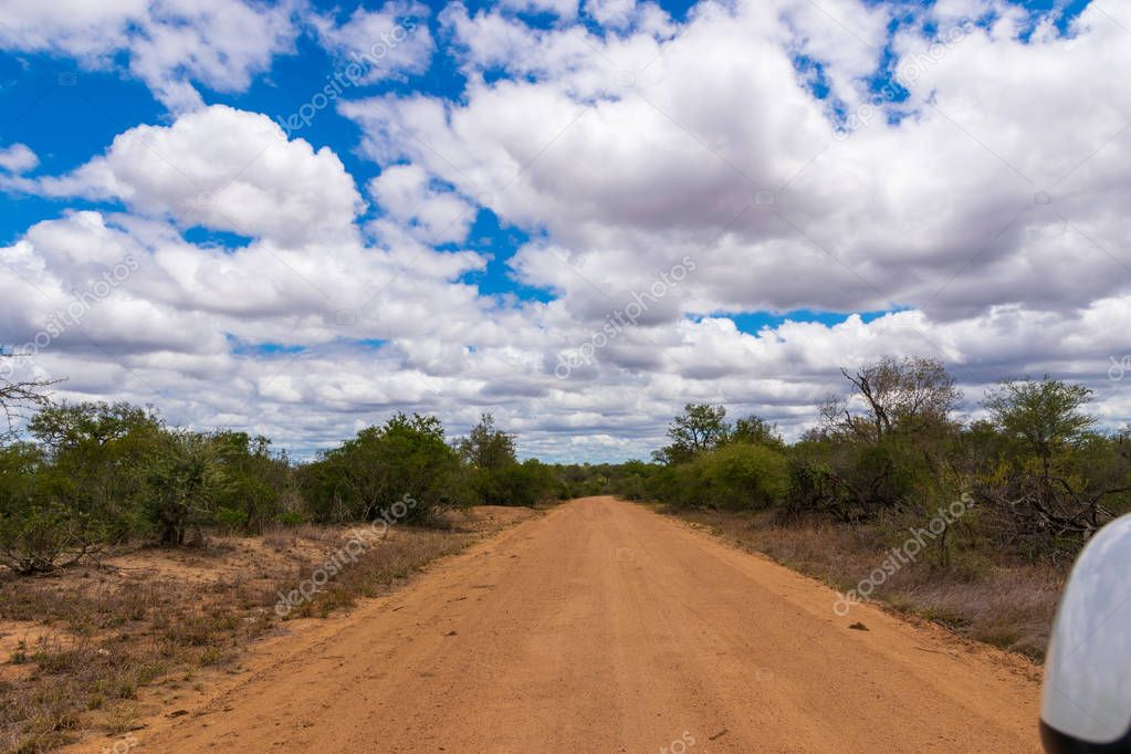 A dusty road in the national park