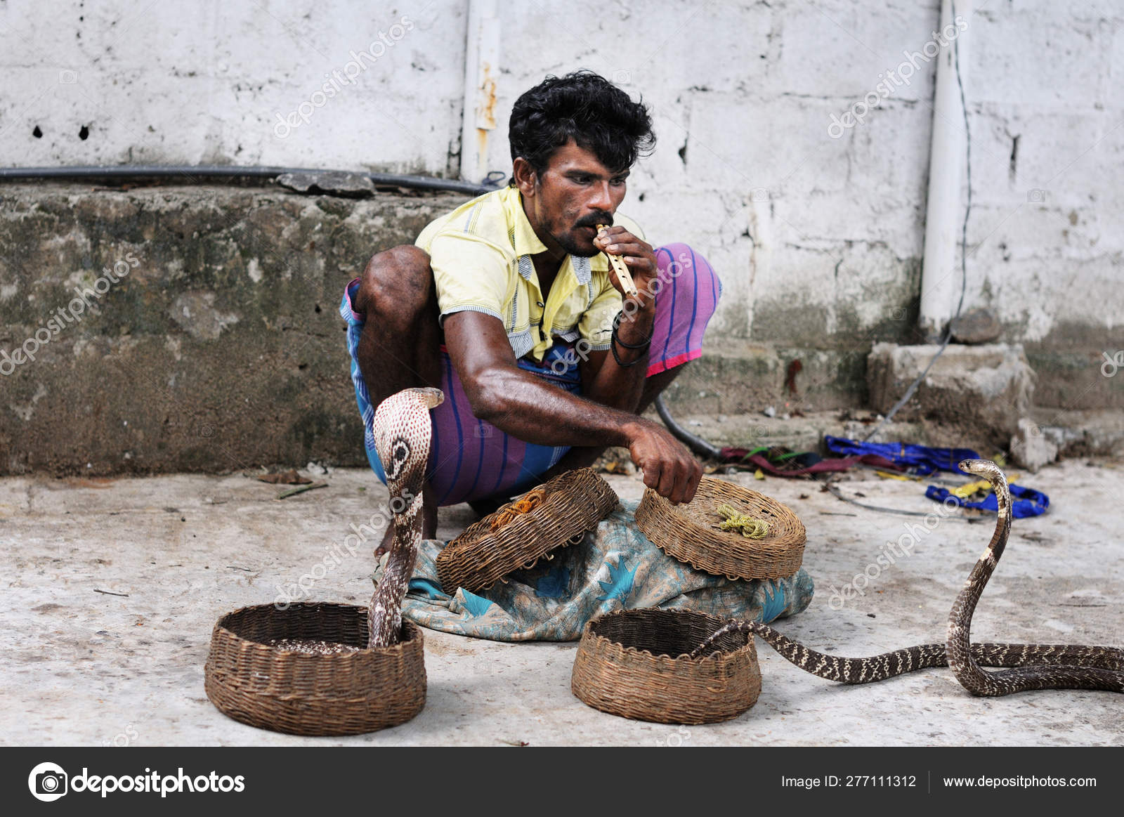 Snake Charmer Playing Flute and Poisonous Cobra Snake in
