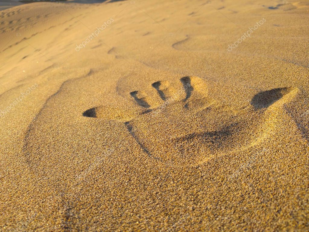 close up of a hand print of the left-handed on the golden sand of a dune of the desert. Horizontal photo