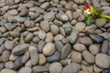 Flowers placed on granite blocks