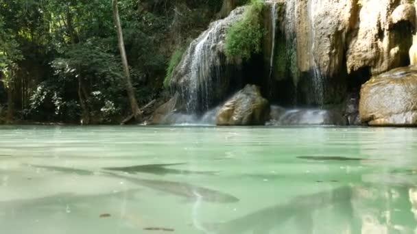 rybího plavání pod vodou kolem Erawského vodopádu, populární turistická atrakce v Kanchanaburi v Thajsku. Erawan je vodopád v tropickém deštných lesích, oblíbený pro turisty.