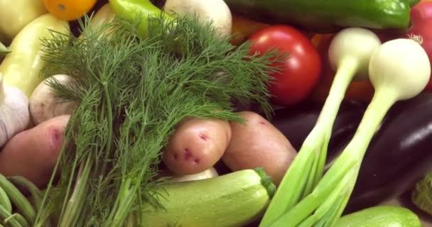 Pozadí organické zeleniny bez GMO pěstovaných bez pesticidů v ekologicky čistých regionech Evropy.