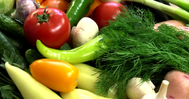 Background from organic vegetables without GMOs grown without pesticides in ecologically clean regions of Europe.