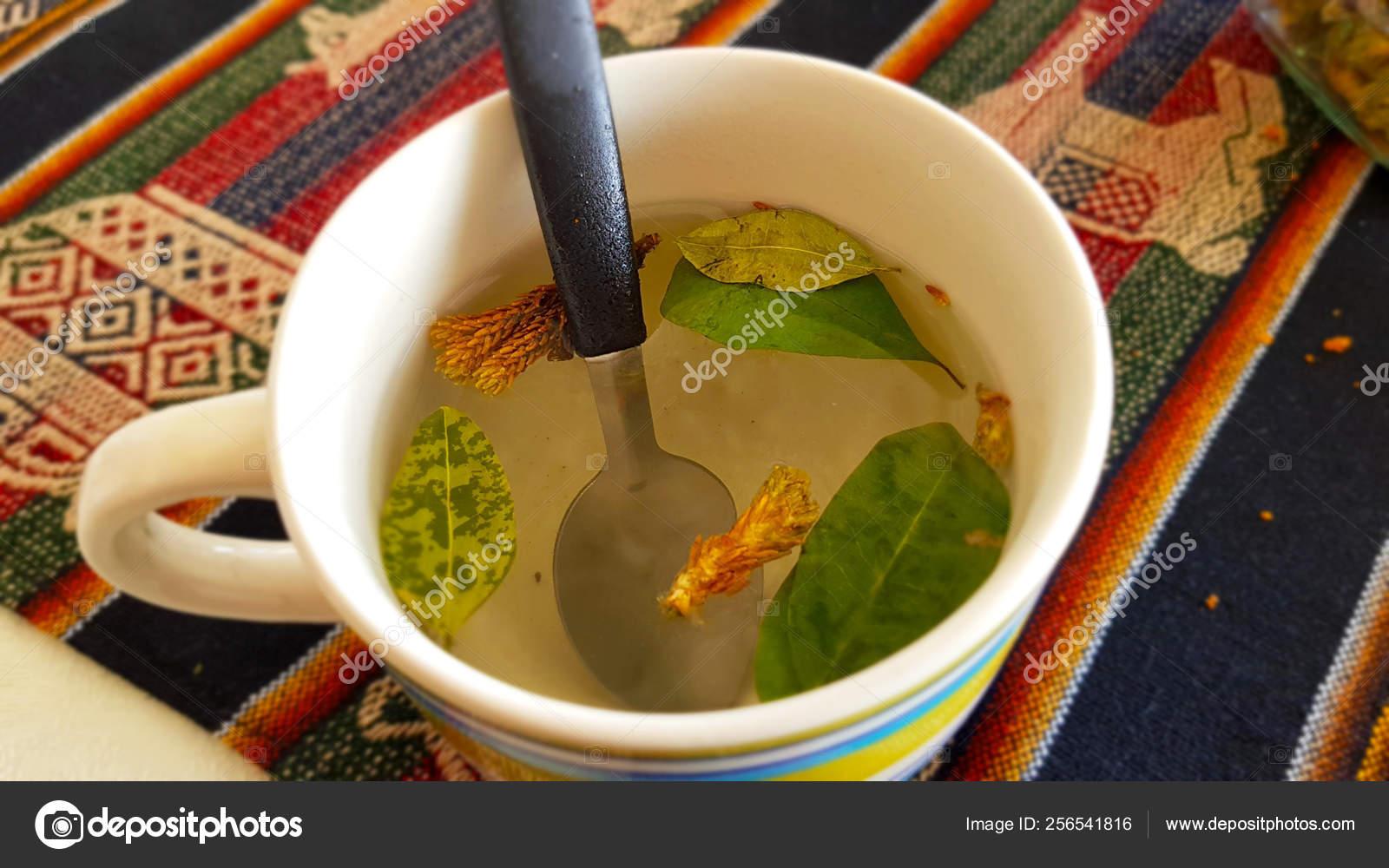 Cup Coca Tea Mate Coca Bolivia Mate Coca Herbal Tea — Stock