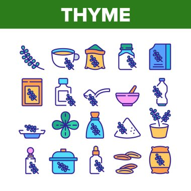 Thyme Plant Product Collection Icons Set Vector. Thyme Branch And Aromatic Herb, Drink Cup And Bottle, Bag And Package, Spoon And Plate Color Illustrations icon