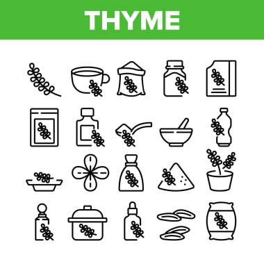 Thyme Plant Product Collection Icons Set Vector. Thyme Branch And Aromatic Herb, Drink Cup And Bottle, Bag And Package, Spoon And Plate Concept Linear Pictograms. Monochrome Contour Illustrations icon