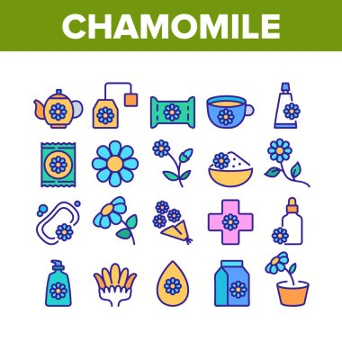 Chamomile Flower Plant Collection Icons Set Vector. Chamomile Tea Delicious Healthcare Drink, Bouquet And Bud, Soap And Cream Cosmetic Color Illustrations icon
