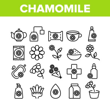 Chamomile Flower Plant Collection Icons Set Vector. Chamomile Tea Delicious Healthcare Drink, Bouquet And Bud, Soap And Cream Cosmetic Concept Linear Pictograms. Monochrome Contour Illustrations icon