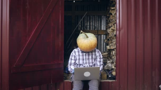 Successful freelancer with pumpkin on head