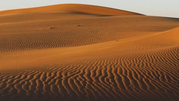 Malebné záběr červených písečných dun, při západu slunce
