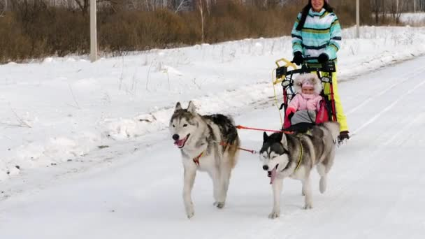 Woman and child in dog sled