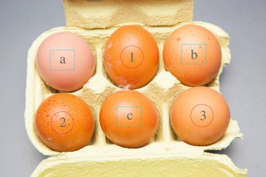 Half a dozen fresh eggs, from healthy hens, prepared to be consumed in a thousand different ways. With eggs we can make hundreds of recipes both in the pstelera, pastry and traditional cuisine.