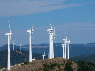 Wind farm where electricity is generated cleanly