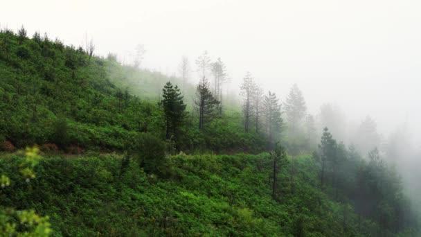 Mlhy se pomalu pohybuje od hory