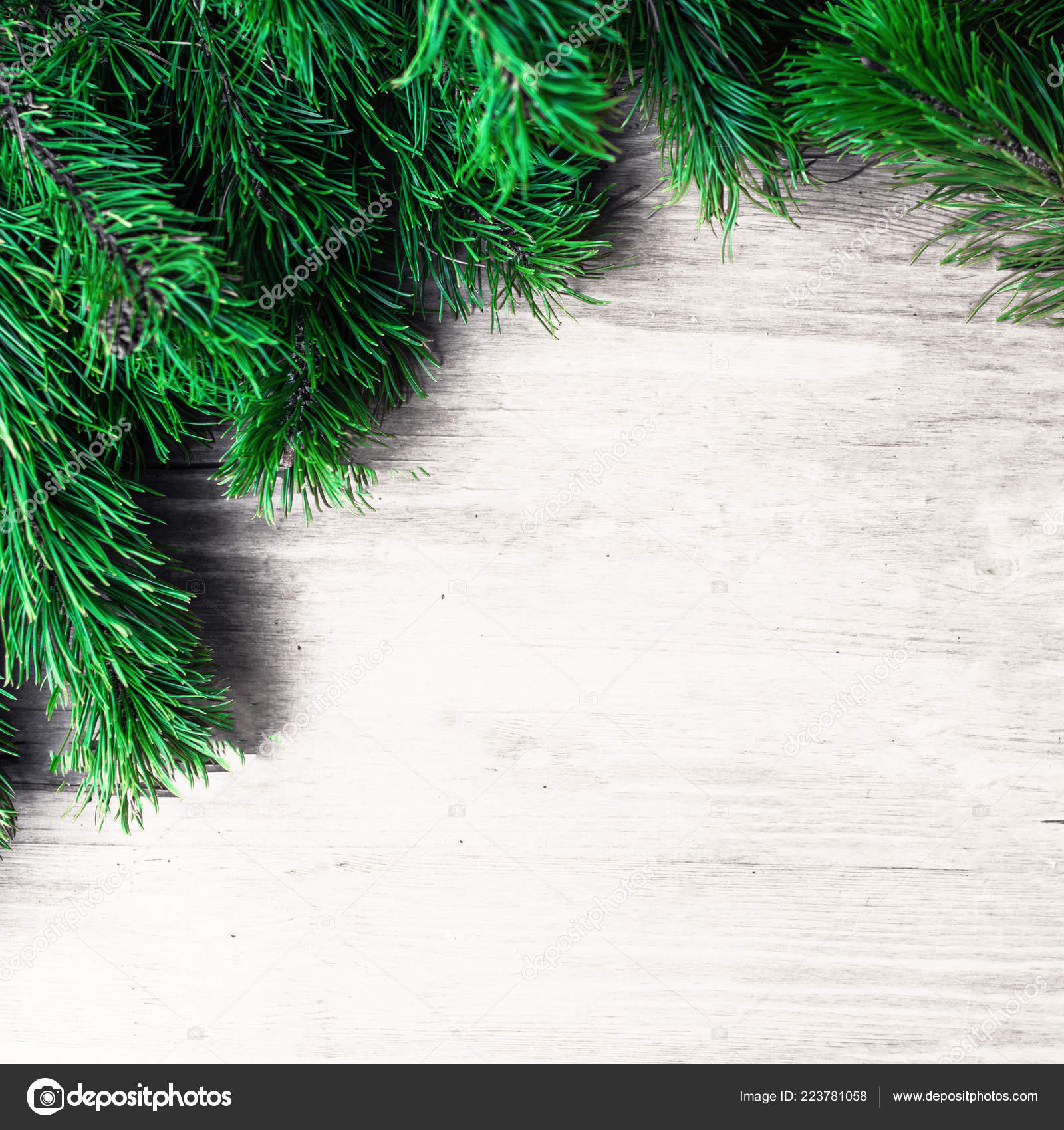 depositphotos 223781058 stock photo christmas frame fir tree branches