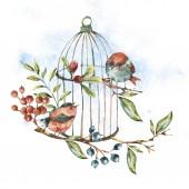 niedliches Aquarell natürliche florale Grußkarte mit Vögeln