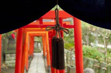 Tori gates at shinto Nezu Shrine, Tokyo, Japan