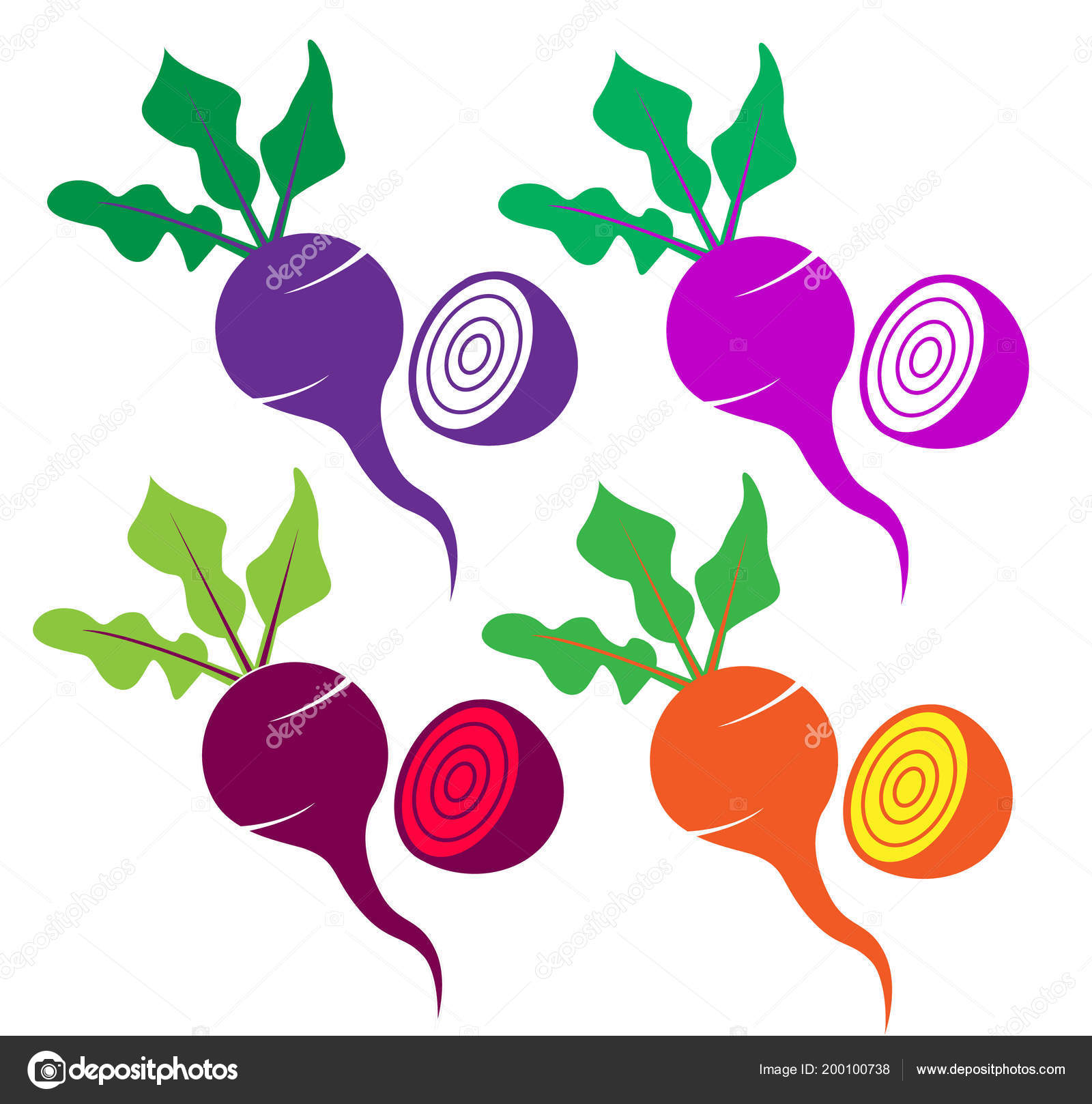 Beetroot Sign Icon Set Purple Pink Red Yellow Vector Draw Stock