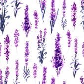 Seamless Pattern with watercolor lavender flowers isolated on white background
