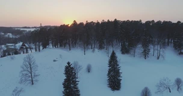 Hó és fagy borított fák.