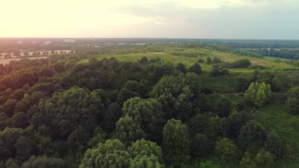 Aerial View Of Amazing Sunset Over The Park In Germany.
