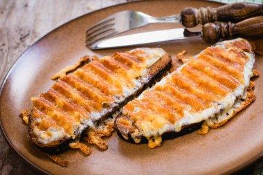 Grilled cheese sandwich, welsh rarebit, selective focus, top vie